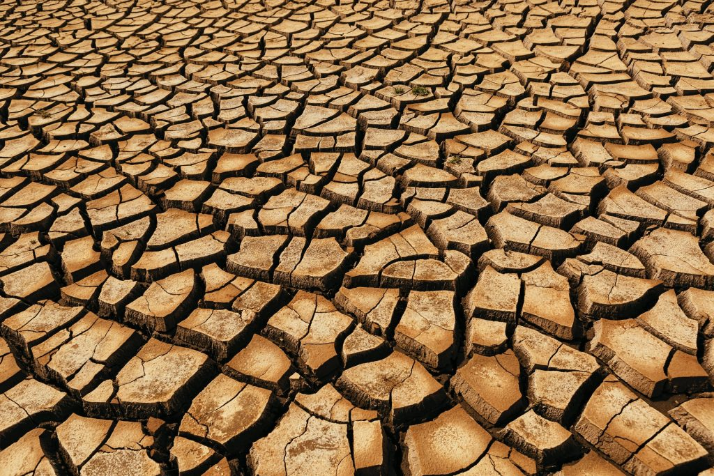 liked dried out soil, concrete can also crack from excess dry heat